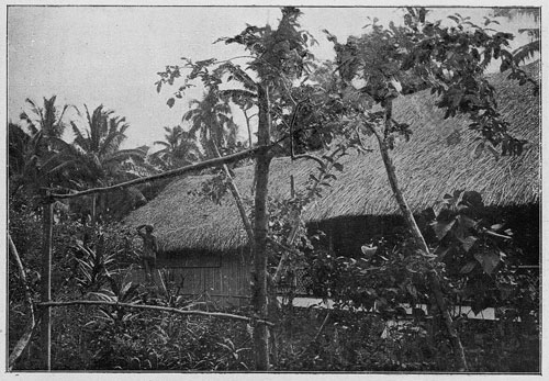 paul-gauguin-7 hut