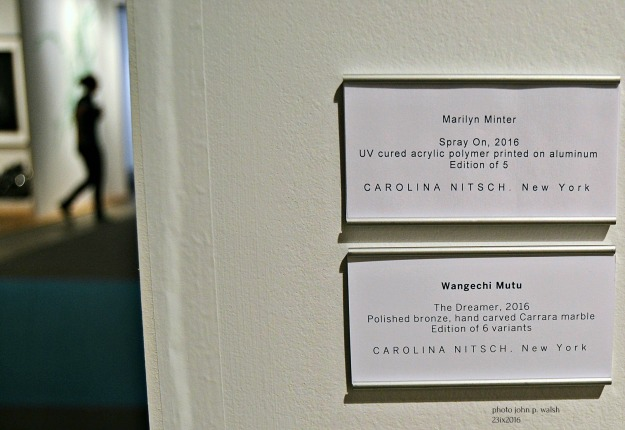 Carolina Nitsch labels.