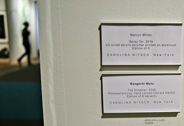 Carolina Nitsch labels.